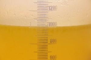 Angegossen wird Gemüsebrühe oder alternativ Wasser und Gemüsebrühwürfel.