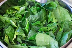 Frischer Spinat sollte gründlich gewaschen werden.