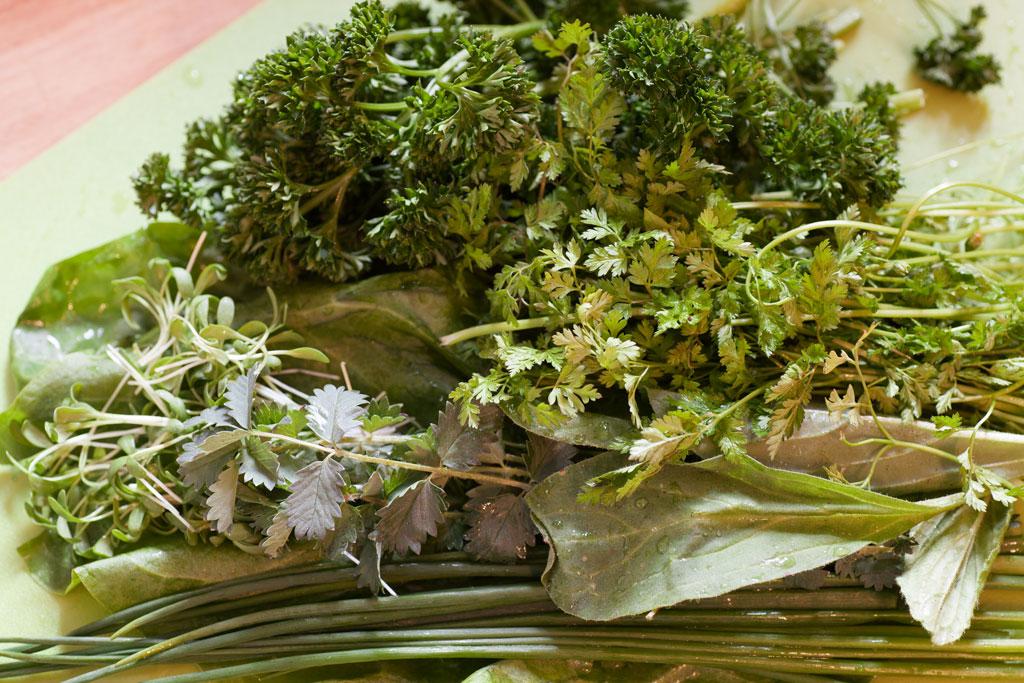 Kräuterzusammenstellung für Hessische Grüne Sauce Borretsch ist vorne rechts im Bild zwischen Schnittlauch und Kerbel.