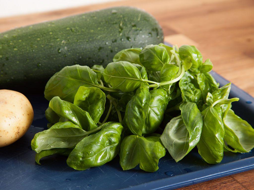 Basilikum gibt der Zucchinicremesuppe ein frisches würziges Aroma.