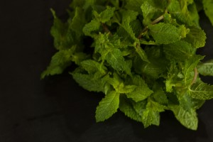 Frische Minze wird in geringerer Menge verwendet als die anderen Kräuter, da sie einen sehr intensiven Geschmack hat.