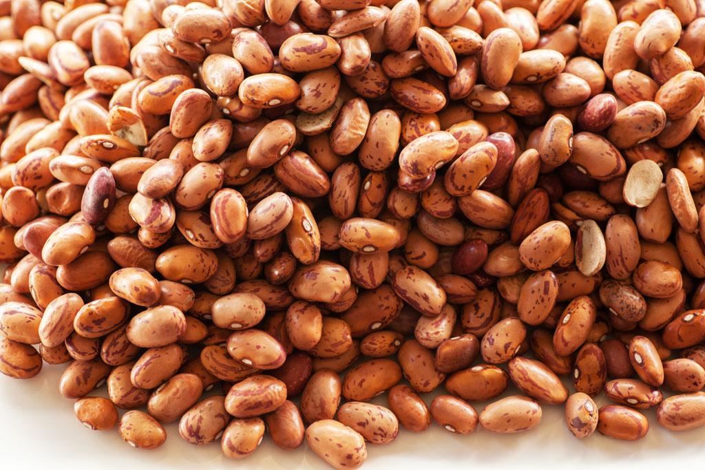 Getrocknete Wachtelbohnen - Barlotti Beans - Barbunya.
