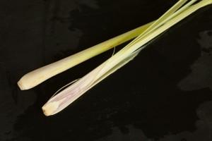 Zitronengras ist sehr fest und holzig, deshalb wird es quer zur Faser sehr fein geschnitten.